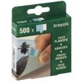 BREPOLS - Pastilles double face Boîte de 500